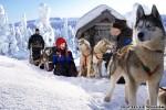 vuokatti_talvi3
